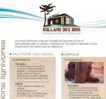 ROLLAND DE SBOIS : MÉRULES